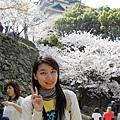 我來到了和歌山城了。~古城巡禮中~