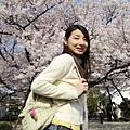 後面的櫻花樹有大顆,超驚豔的。可惜這次的主角是我,呵呵呵