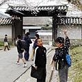 日本小孩也愛來這招,撒櫻花花瓣。那個平頭小弟真是漫畫中典型的日本學童啊~~