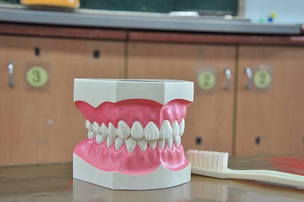 1061018潔牙護齒40.jpg