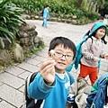 1000315植物園8.jpg