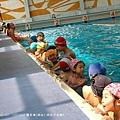 swim16.jpg