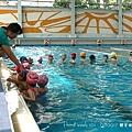 swim20.jpg