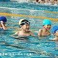 swim27.jpg