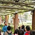 1000315植物園13.jpg