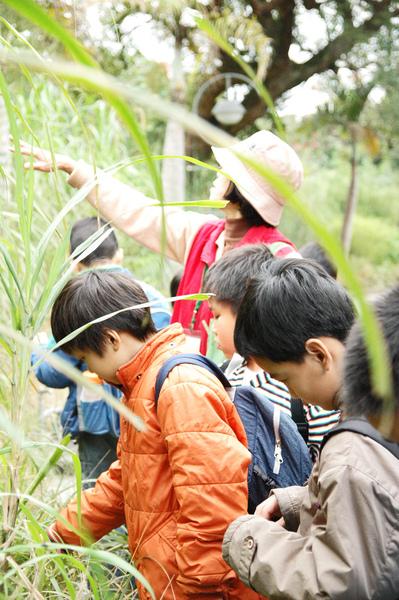 1000315植物園4.jpg
