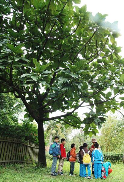 1000315植物園6.jpg