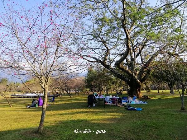 【南投。埔里】春風徐徐。 暨南大學野餐趣