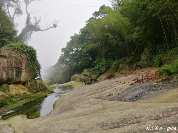 【雲林。古坑】山間小旅行。草嶺風景區~石壁遊龍步道