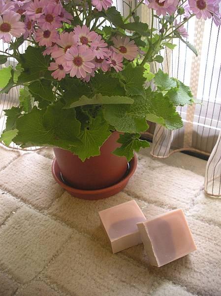 玫瑰天竺葵甦活皂