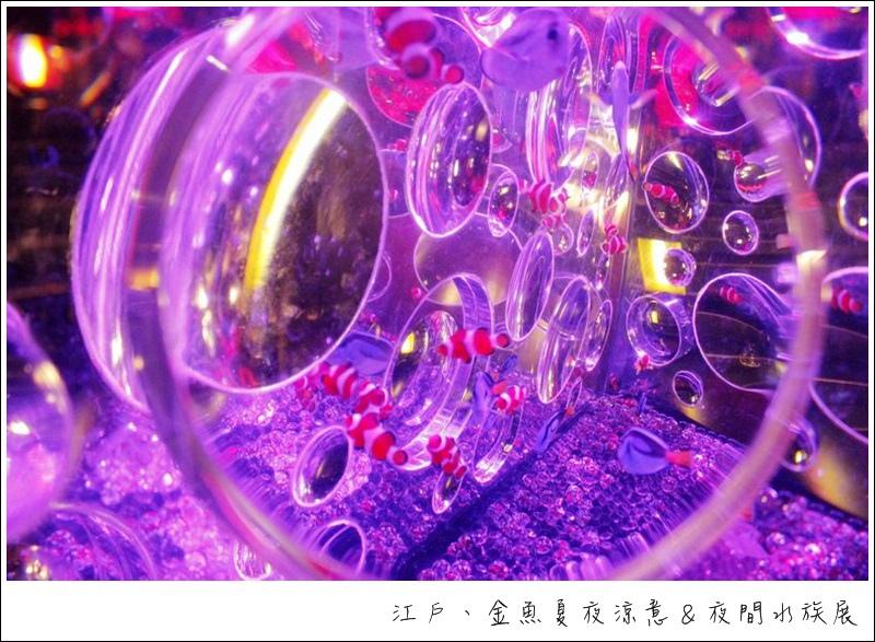 nEO_IMG__MG_4161.jpg