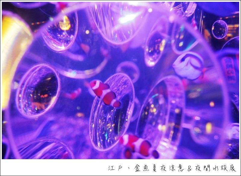 nEO_IMG__MG_4274.jpg