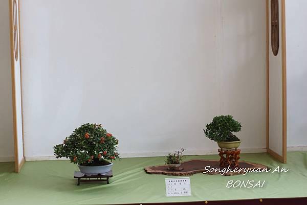 2013 雅風展
