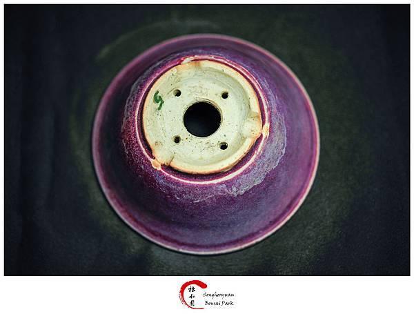 日本【相羽 鴻陽】紫紅均釉窯變丸鉢 %22試釉鉢%22