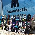 2011 May Mammoth