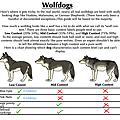 WolfDog01.png