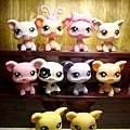 Littlest pet shop02.JPG