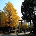 這是淺草神社