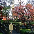 日式庭園!