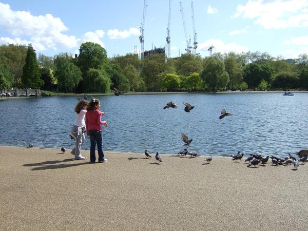 兩個羅莉和鳥們