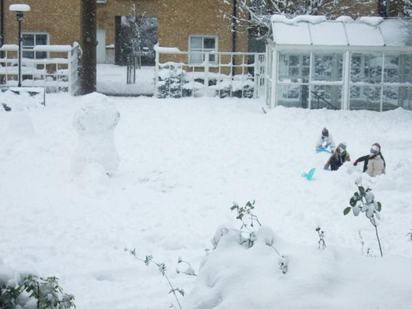 中庭玩雪盛況