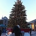 聖誕樹也亮了