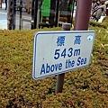 這裡海拔挺高的