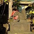 稻荷神社是供奉狐仙