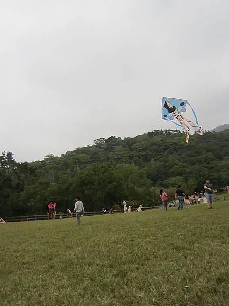 1Y9M10d飛牛牧場 (28).jpg