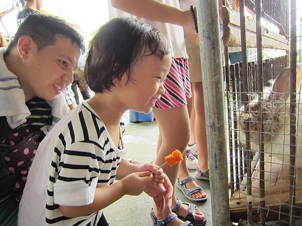 201409宜農牧場 (21).JPG