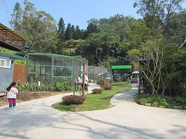森林鳥花園 (11).jpg