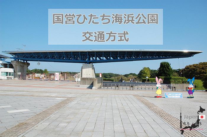 01-DSC_0367.JPG