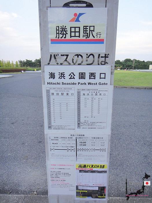 02-DSC01681.JPG