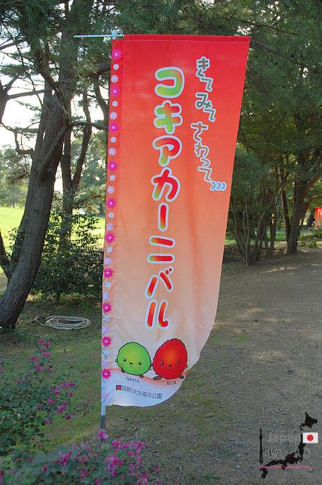 17-DSC_0417.JPG