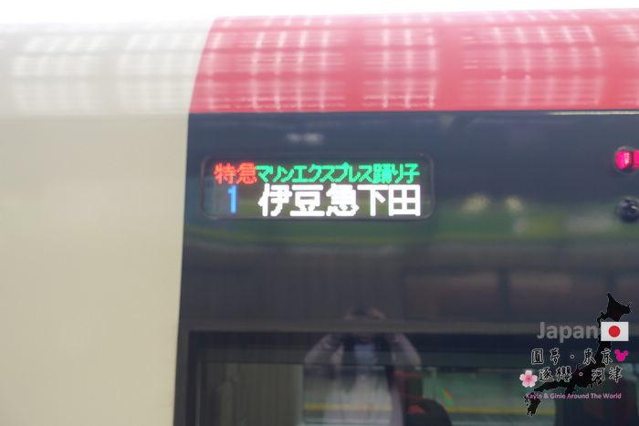 12-DSC09468.jpg