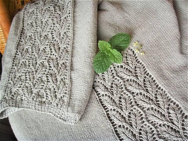 冬織夏著之初生葉
