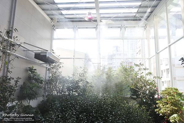 吃茶三千 台中 大英概念店 3樓 茶窖