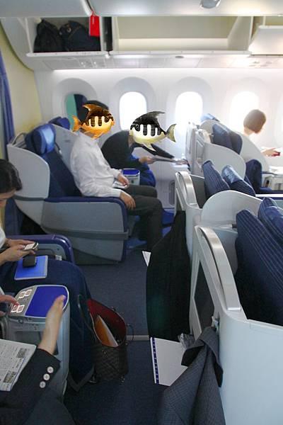 ANA 788 seat 2-2-2