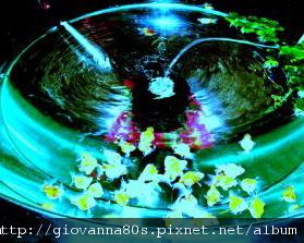 2005-03-14 010.jpg