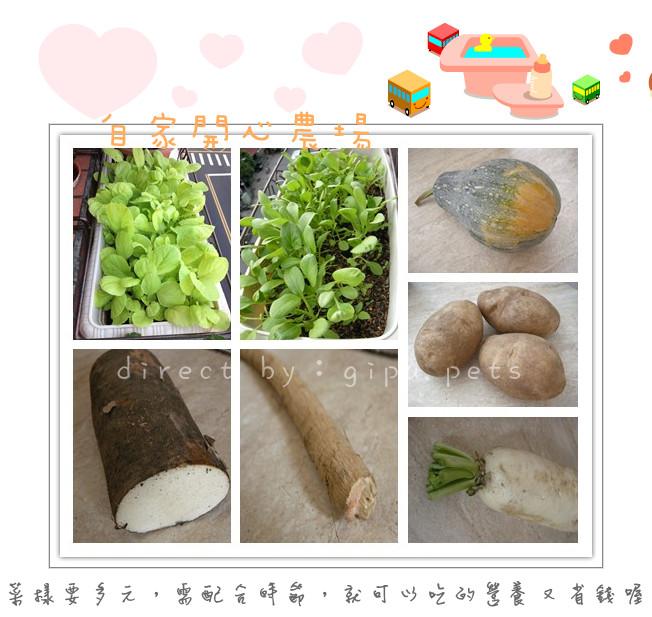 寵物鮮食p1