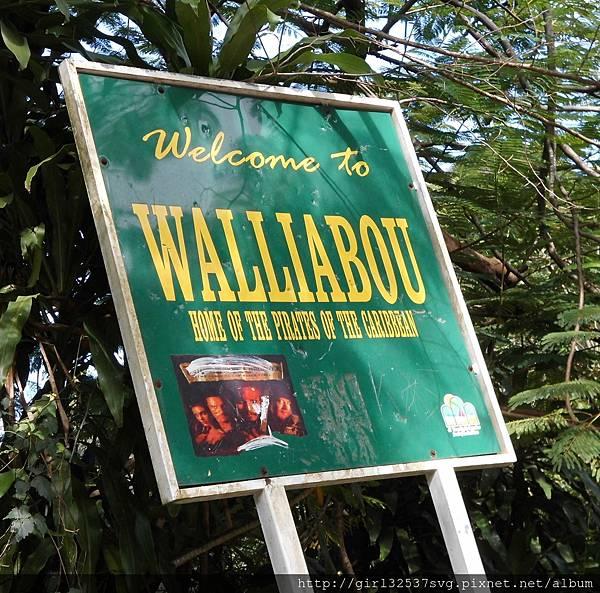 Walliabou (1).JPG