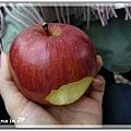 在朝市買到的大蘋果