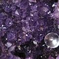 第一次發現這麼紫