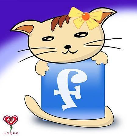 Facebook 上的台灣人們