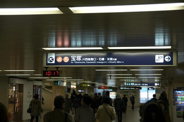 DSC03868.jpg