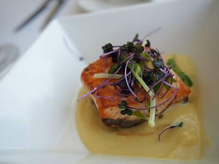 炙燒鮭魚佐白花菜泥