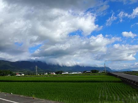 台東平原 (5)