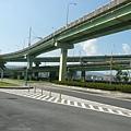 盤根錯節的高架橋 此乃環東大道