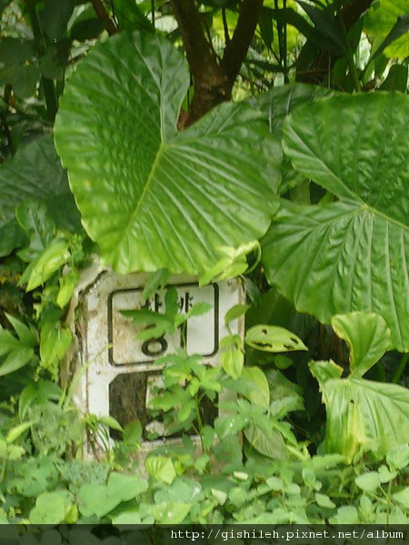 P1430319.JPG