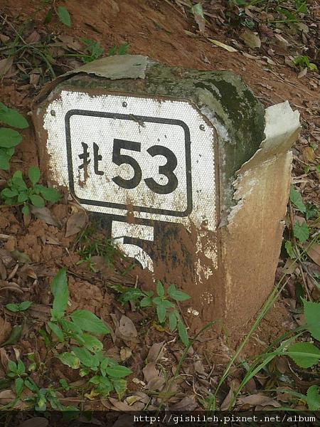 P1390199.JPG